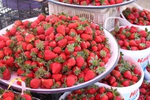 Mahmutlar market, Alanya, Turkey