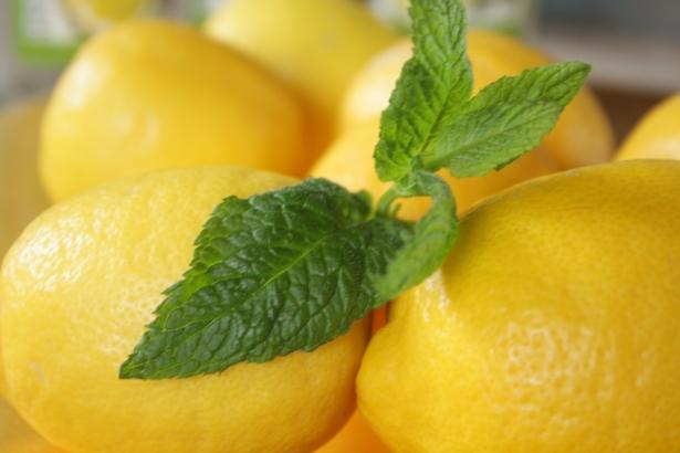 Photo 46_lemons