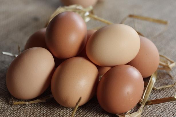 Eggs by fiona dillon