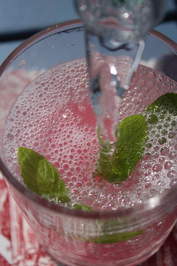 Rhubarb Cordial fionadillon (1)