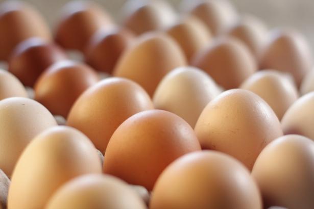 Eggs (21)